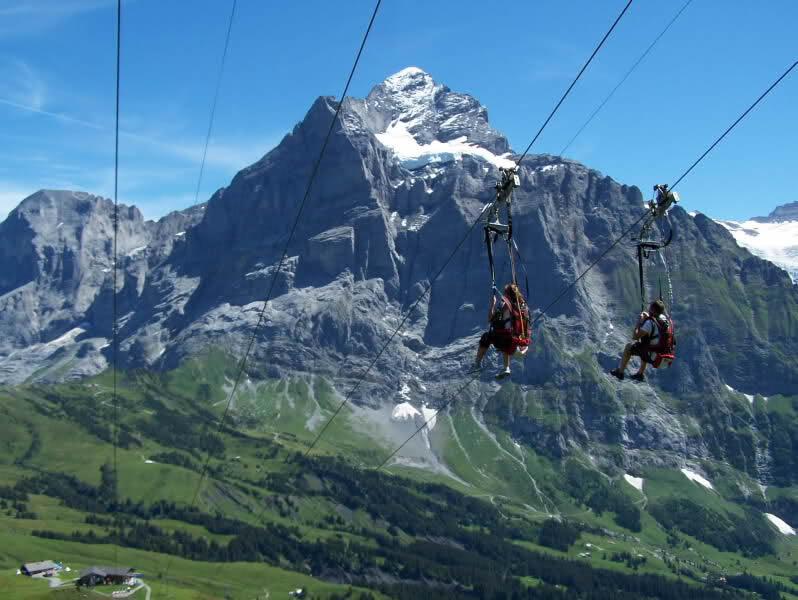 Ziprider 174 In Grindelwald Switzerland