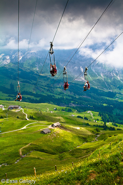 top dating sites in austria
